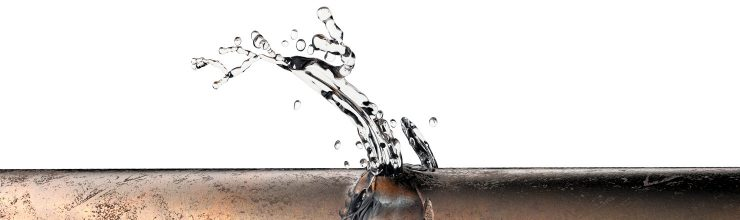 Immediate Steps to Take When You Have a Water Leak